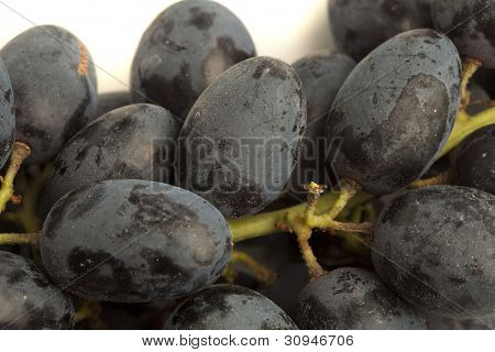 extreme closeup of  fresh black grapes