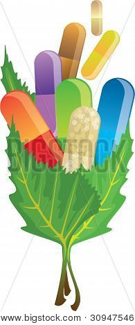 Pills Capsules In The Leaves, Vector Illustration