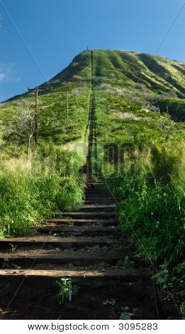 Koko Head Hiking Trail