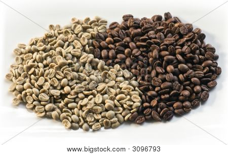 Coffee Beans 06