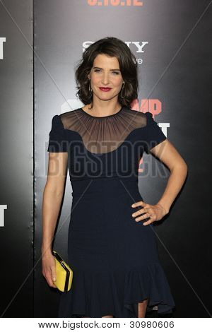 LOS ANGELES - MAR 13:  Cobie Smulders arrives at the