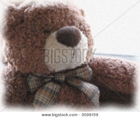 Teddy Bear Iv