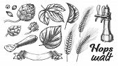 Hop Leaves Barley Wheat Rye Ear Opener Set Vector. Bar Pub Beer Crane Tap And Tool For Open Glass Bo poster