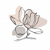 Modern Abstract Shapes Vector Background Or Layout. Contour Line Drawing Flower Of Magnolia.  Modern poster