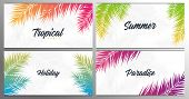 Set Of Summer Tropical Palm Leaves. Exotic Palms Tree. Floral Background. poster