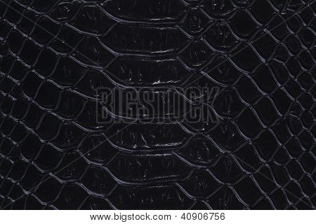 Texture Of A Snakeskin