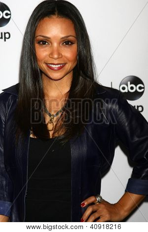 LOS ANGELES - JAN 10:  Danielle Nicolet attends the ABC TCA Winter 2013 Party at Langham Huntington Hotel on January 10, 2013 in Pasadena, CA