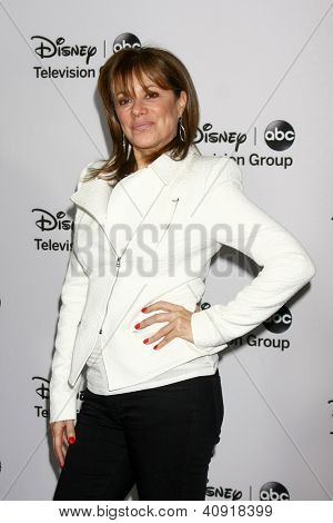 LOS ANGELES - JAN 10:  Nancy Lee Grahn attends the ABC TCA Winter 2013 Party at Langham Huntington Hotel on January 10, 2013 in Pasadena, CA