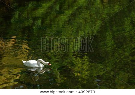 Accelerated Fishing