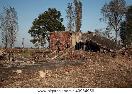 Destruction Of The Gas Chambers And Crematoria, Auschwitz
