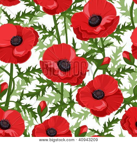 Seamless background with red poppies. Vector illustration.