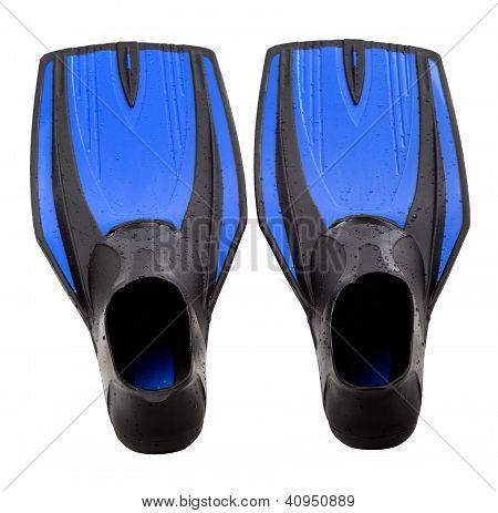 Blue Swim Fins