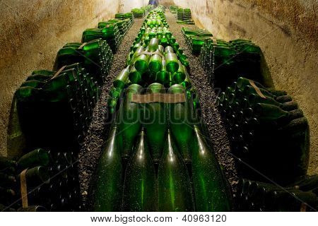 wine archive, Czech Republic