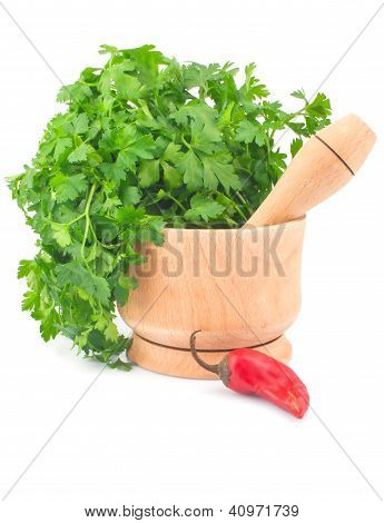 Parsley In Mortar And Chili Pepper