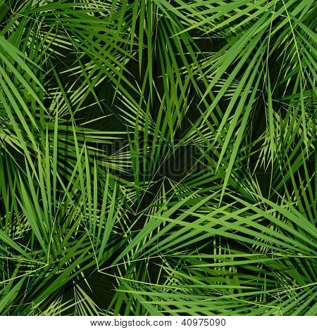 Seamless Palm Trees Leaves Wallpaper