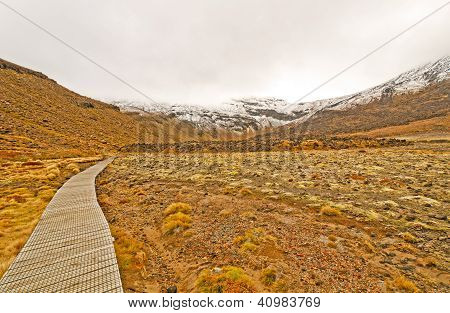 Trail To A Snowy Peak