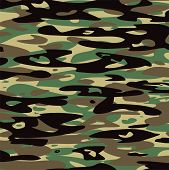 picture of camoflage  - vector abstract background of summer camouflage pattern - JPG