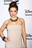 LOS ANGELES - JAN 10:  Alyssa Milano attends the ABC TCA Winter 2013 Party at Langham Huntington Hot