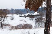 foto of hamlet  - snow covered hamlet on margin of a spruce forest on a winter day - JPG