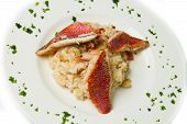 stock photo of mullet  - a white dish with rice with red mullet and seafood - JPG