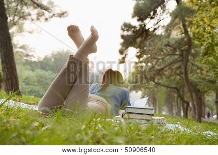 Teenage girl reading book in the park