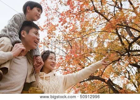 Family walking through the park in the autumn, little boy sitting on his fathers shoulders