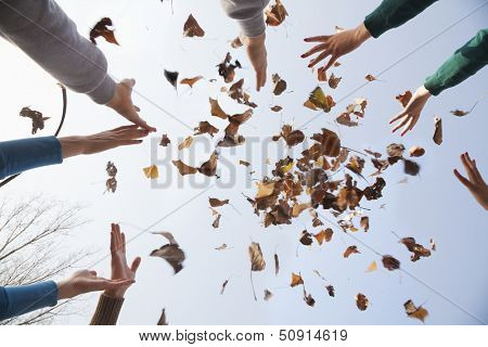 Group of young people throwing leaves