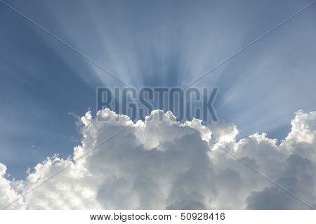 The Sunshine Streams