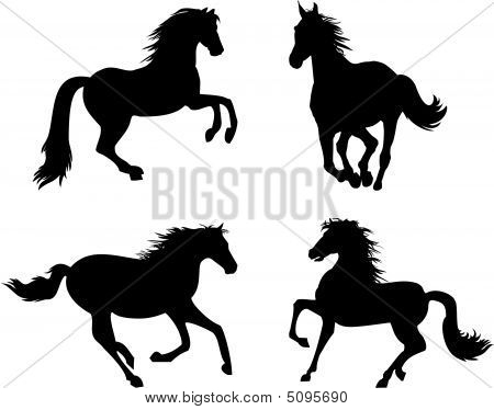 Four Horses Silhouettes
