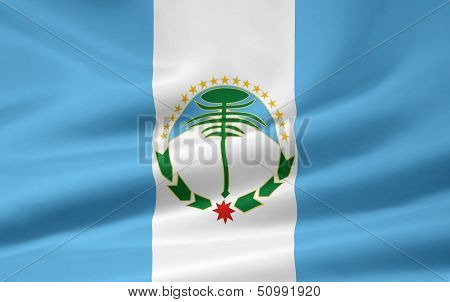 Flag of Neuquen - Argentina