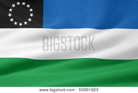 Flag of Rio Negro - Argentina