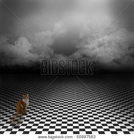 Gato Ginger sentado en imagen vacía, oscuro, psicodélico con piso de corrector blanco y negro