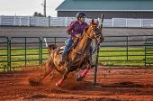 stock photo of barrel racer  - Young woman competing in a pole bending equestrian competition - JPG
