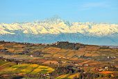pic of snowy hill  - View of autumnal hills with vineyards and snowy mountain peaks on background in Piedmont - JPG