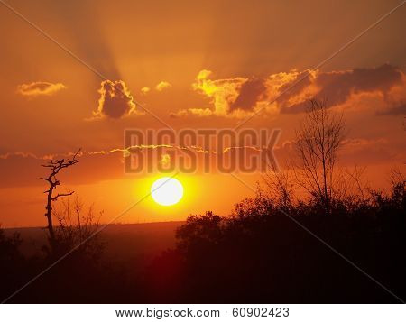 Sunset Orange Glow Sunset