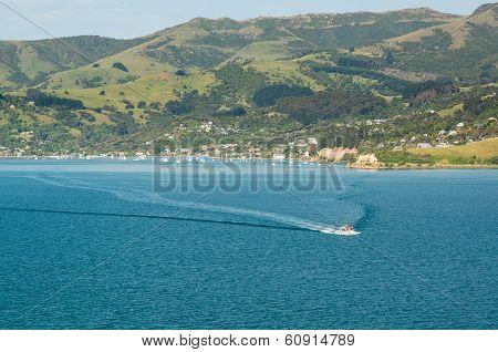 Cruise Ship Tender Leaving Akaroa Harbour Nz