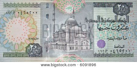 Egyptian twenty pounds