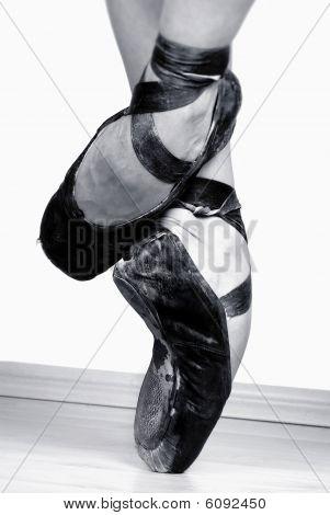 Ballet Shoe