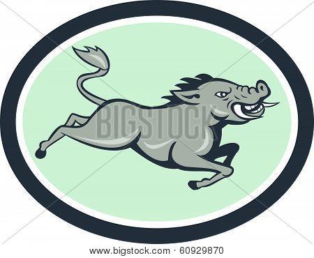 Wild Boar Razorback Jumping Side Cartoon