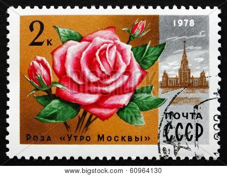 Postage Stamp Russia 1978 Rose Moscow Morning