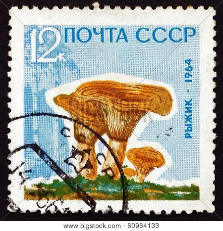Postage Stamp Russia 1964 Saffron Milk Cap, Mushroom