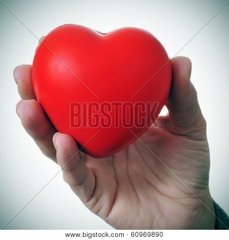 a woman hand holding a red heart