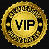 Vip Membership Golden Label, Vip Vector Illustration