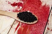 foto of elderberry  - Therapeutic elderberry fruit on a wooden spoon - JPG