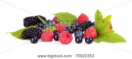 Studio Shot Assorted Fresh Various Berries Isolated White Background