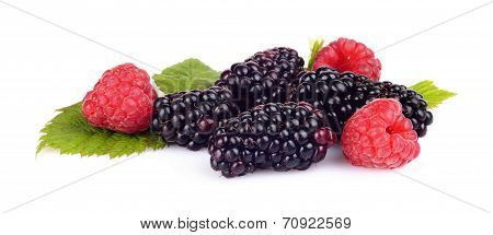 Assorted Blackberries And Raspberries Isolated White Background
