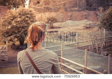 Young Woman Standing By Animal Enclosure