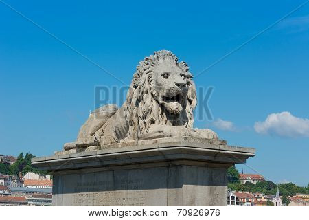 Lion Statue Chain Bridge Budapest Hungary