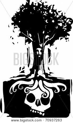 Skull Tree Roots