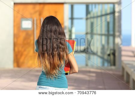 Back View Of A Teen Girl Walking Towards The School